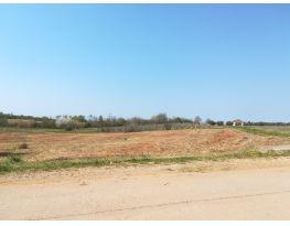 Agricultural plot, Sale, Kaštelir-Labinci, Labinci